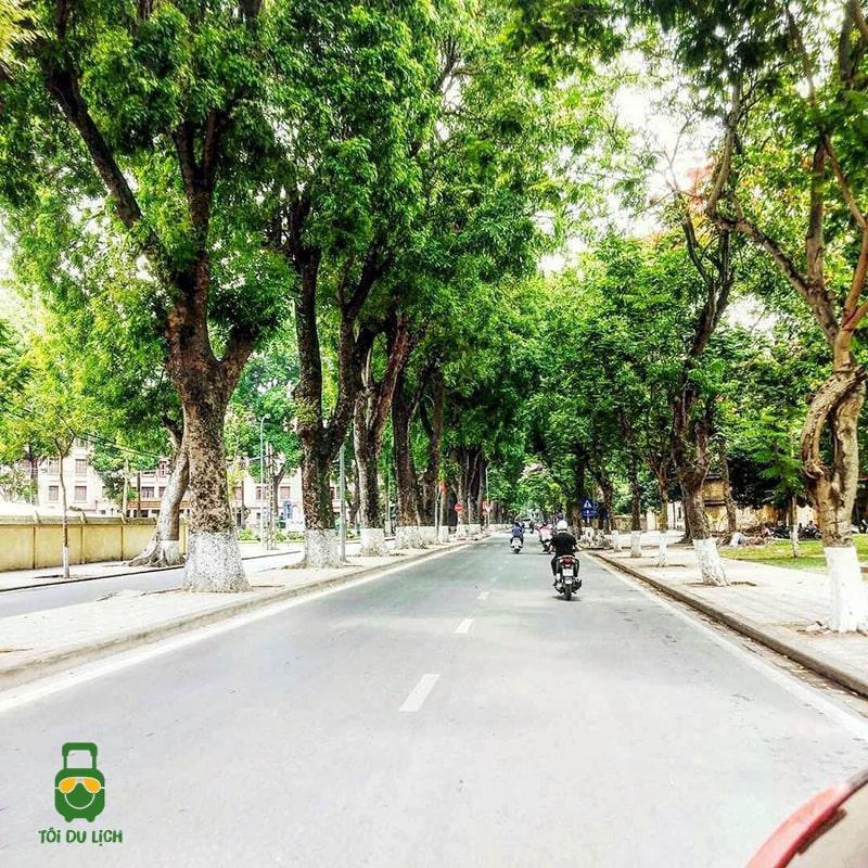 Đạp xe trên đường Phan Đình Phùng