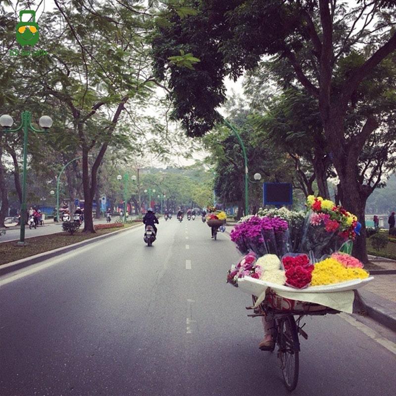 Đạp xe trên đường Thanh Niên
