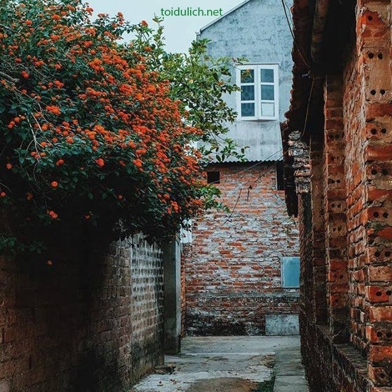 Những ngôi nhà cũ ở làng Đường Lâm