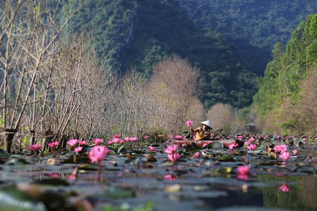 Đi lễ hội chùa Hương du xuân ngày đầu năm 1