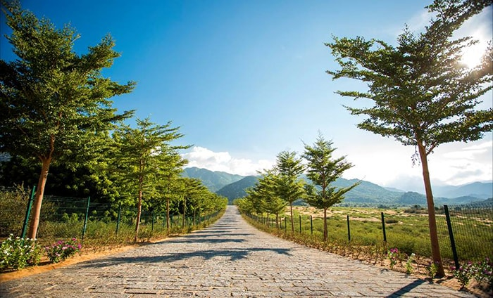 Đường vào làng Mông cổ Tanyoli Ninh Thuận