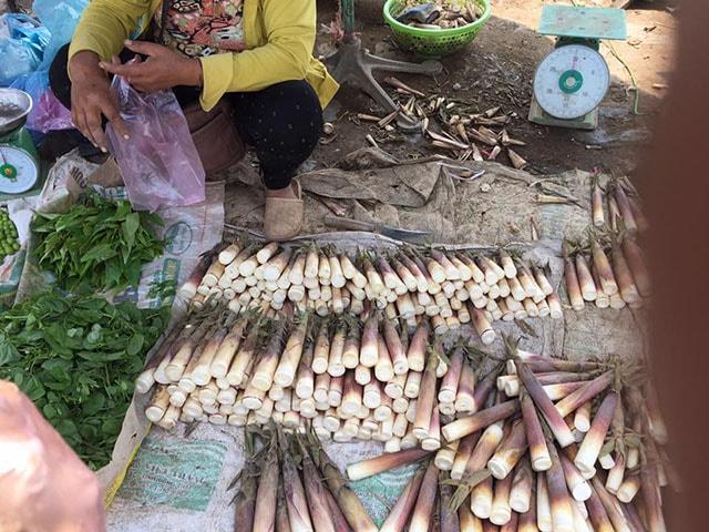 Đặc sản măng đắng Điện Biên