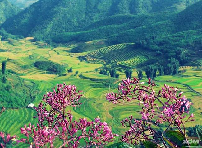 Mộc Châu cũng là điểm du lịch lý tưởng cho dịp lễ 30/4
