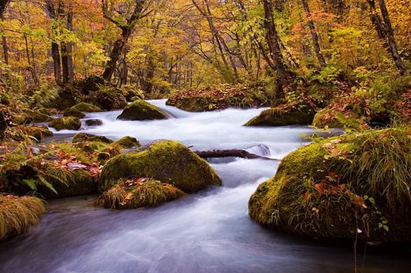 Vườn quốc gia Towada Hachimantai