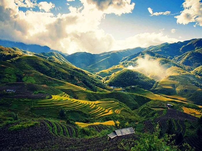 Thung lũng Mường Hoa mùa lúa chín