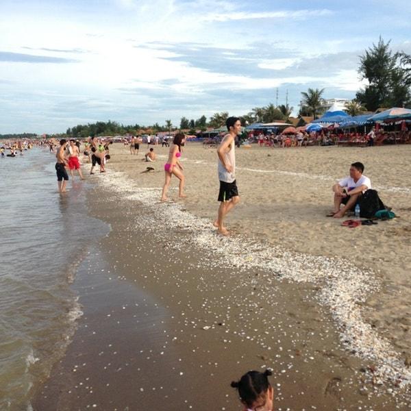 Bãi biển Cửa Lò đẹp say đắm lòng người