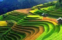 10 địa danh ở Lai Châu bạn nhất định phải ghé thăm