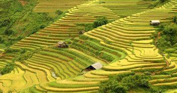 Kinh nghiệm phượt Lai Châu khởi hành từ Hà Nội dành cho phượt thủ