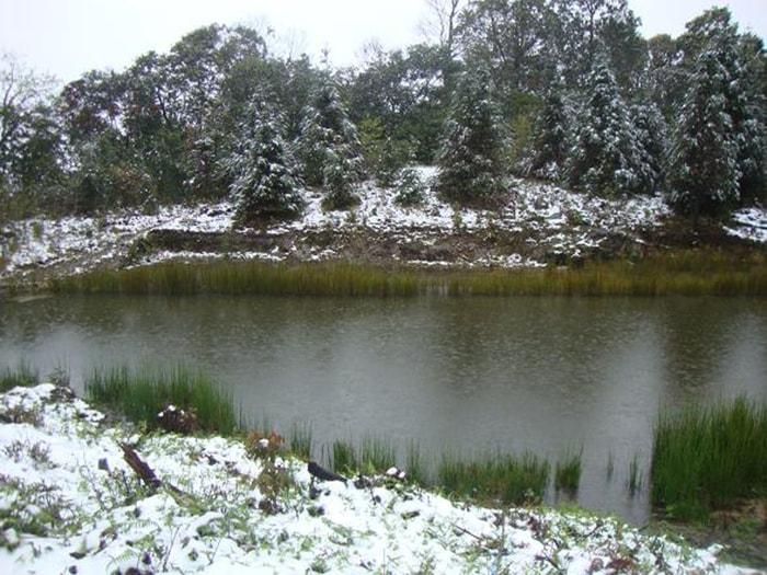 Ngắm tuyết rơi trên Tây Côn Lĩnh (Hà Giang)