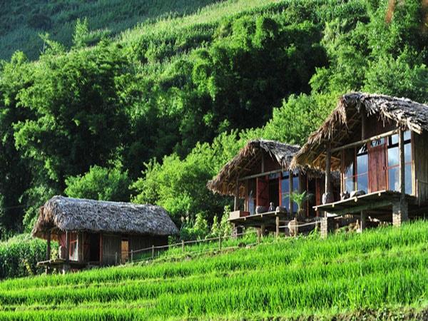 Eco Palms House nằm ở bản Lào Chải