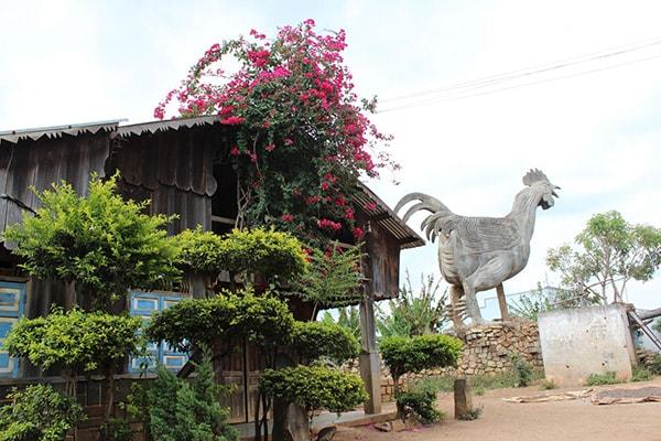 Làng Gà, một nét độc đáo của làng dân tộc K'ho