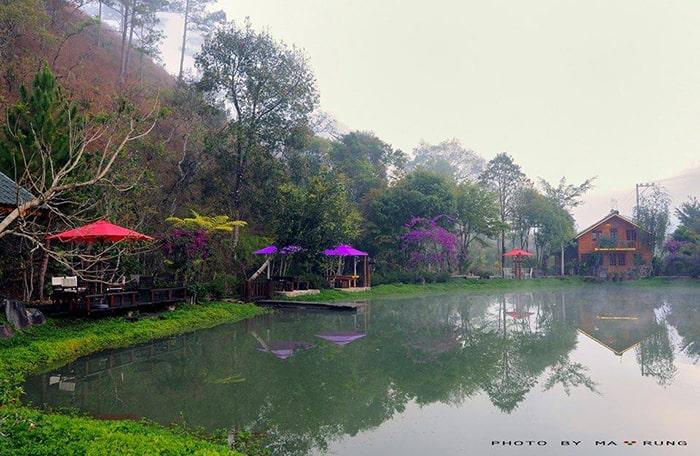 Cảnh vật bên trong Ma rừng lữ quán