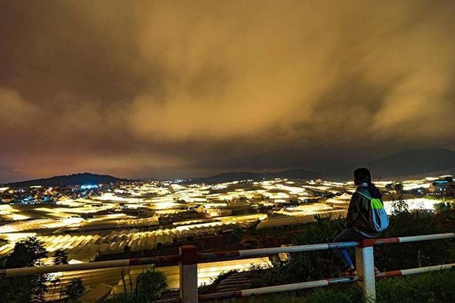 Đà Lạt về đêm nhìn từ trên đồi