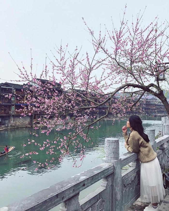 Phượng Hoàng cổ trấn mùa xuân