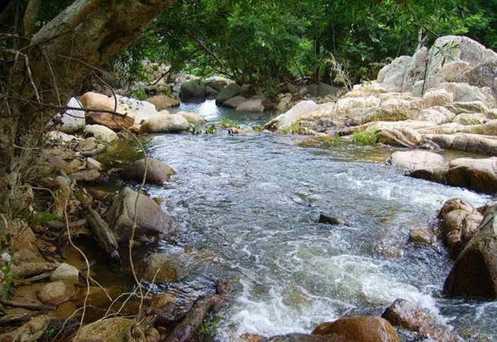 Suối Lồ Ô ở Vĩnh Hy - Ninh Thuận