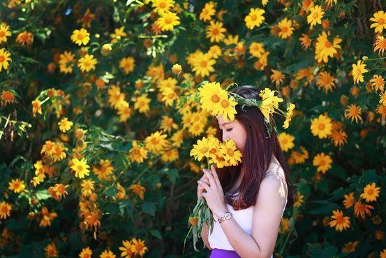 Đến Đà Lạt tháng 10 để ngắm hoa dã quỳ
