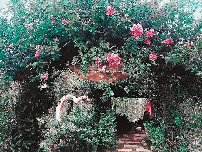 Khu du lịch Đồi Mộng Mơ Đà Lạt ngập tràn sắc hoa