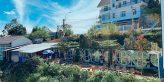 10 Homestay ở Đà Lạt view đẹp, cực hot, giá chỉ từ 150k