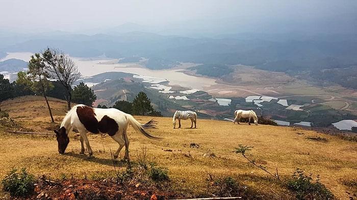 Đứng trên đỉnh Lang Biang có thể nhìn thấy toàn cảnh thung lũng