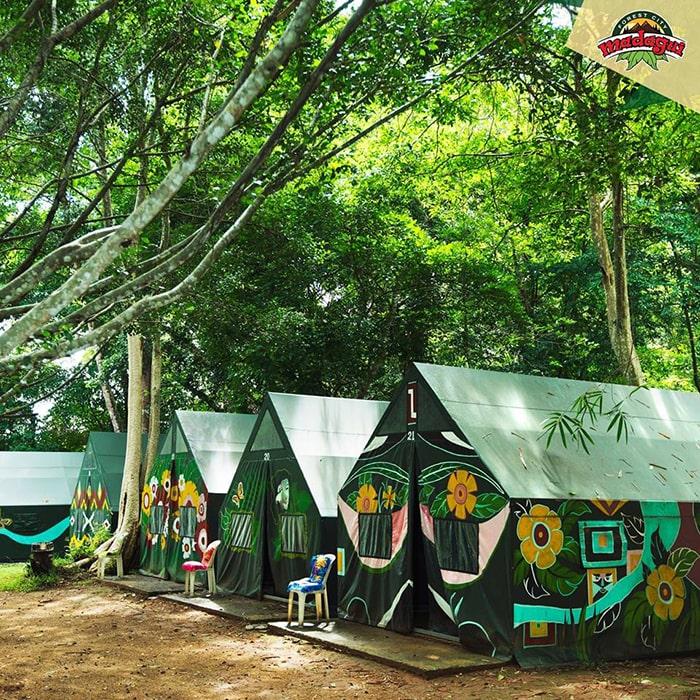 Lều trại bên trong khu du lịch rừng Madagui