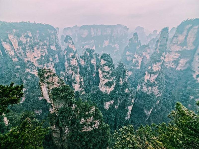 Công viên rừng quốc gia Trương Gia Giới