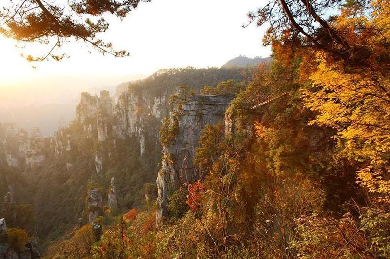 Trương Gia Giới mùa thu