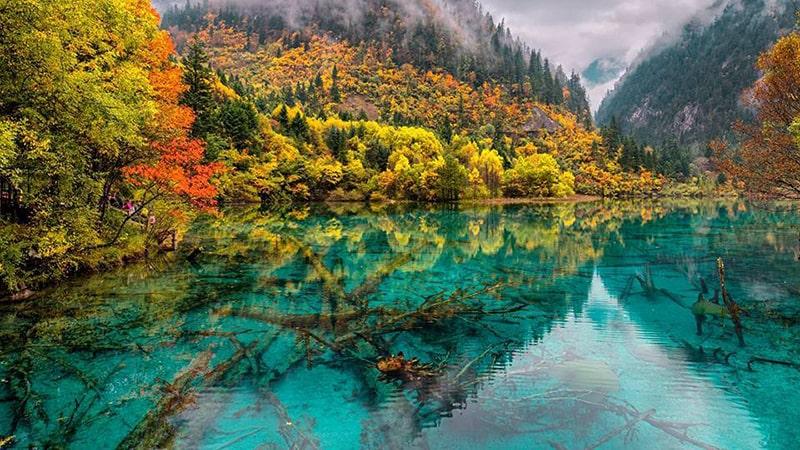 Cửu Trại Câu là thắng cảnh nổi tiếng bậc nhất ở Trung Quốc