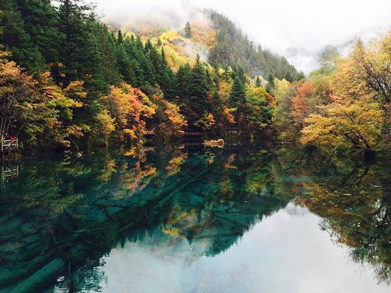 Cửu Trại Câu mùa thu là mùa đẹp nhất