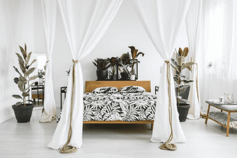 Cây xanh trong phòng ngủ mang những ý nghĩa phong thủy nhất định