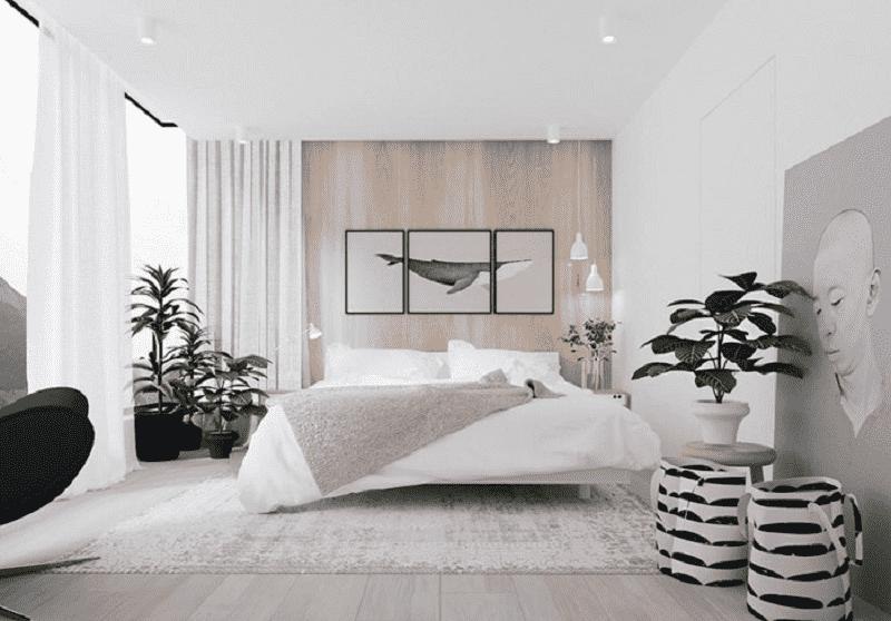 Cây sẽ mang đến nguồn năng lượng tích cực nếu được đặt trong phòng ngủ đúng cách